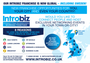 Introbiz Franchise Graphic