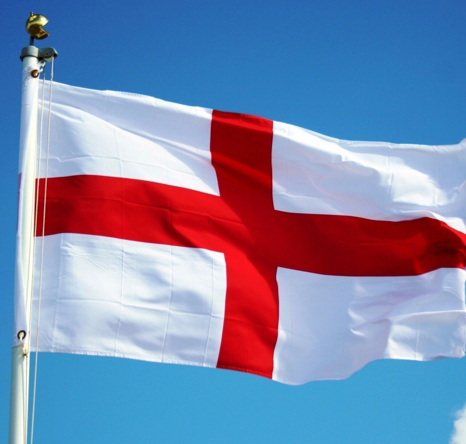 England Business & Sports News