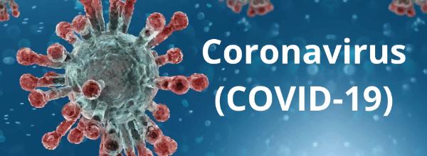 Coronavirus: at a glance | World news